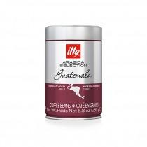 【illy】意利咖啡單品咖啡豆-瓜地馬拉 (250g)(平均每入$399)